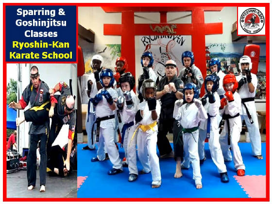 sparringgoshinjitsuclasses22jan2020.jpg