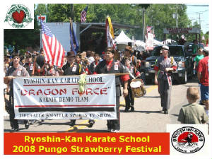 strawberryparade2008.jpg
